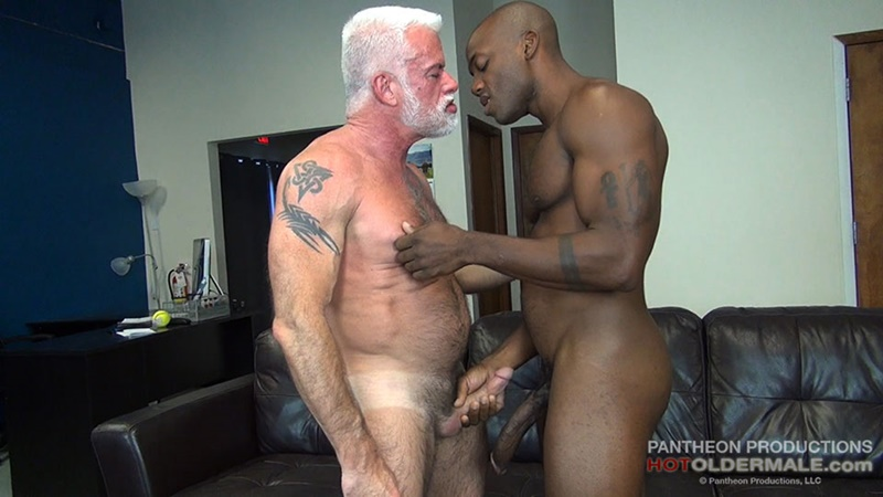 hd gay transexual lover porn