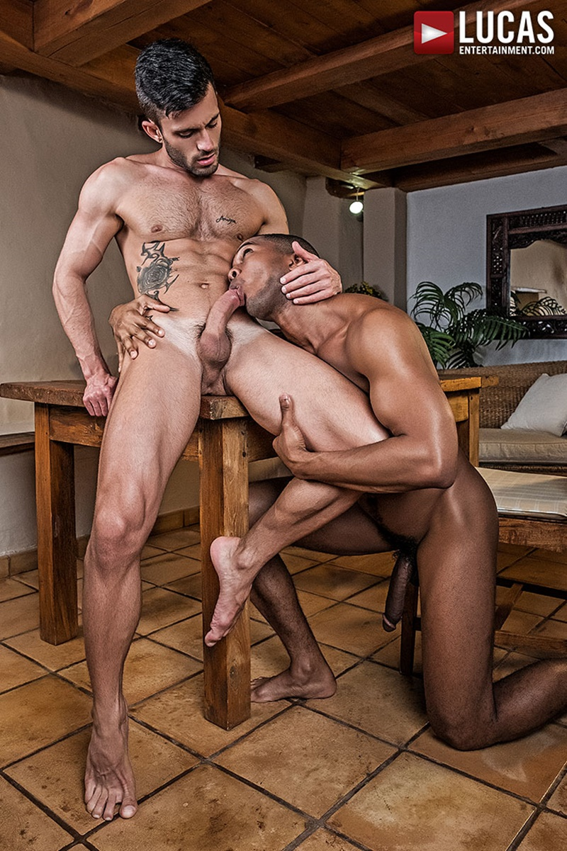 lucasentertainment-sexy-tattoo-muscle-hunk-andy-star-big-thick-uncut-meat-cock-tight-ass-sean-xavier-suck-cocksucking-anal-rimming-011-gay-porn-sex-gallery-pics-video-photo