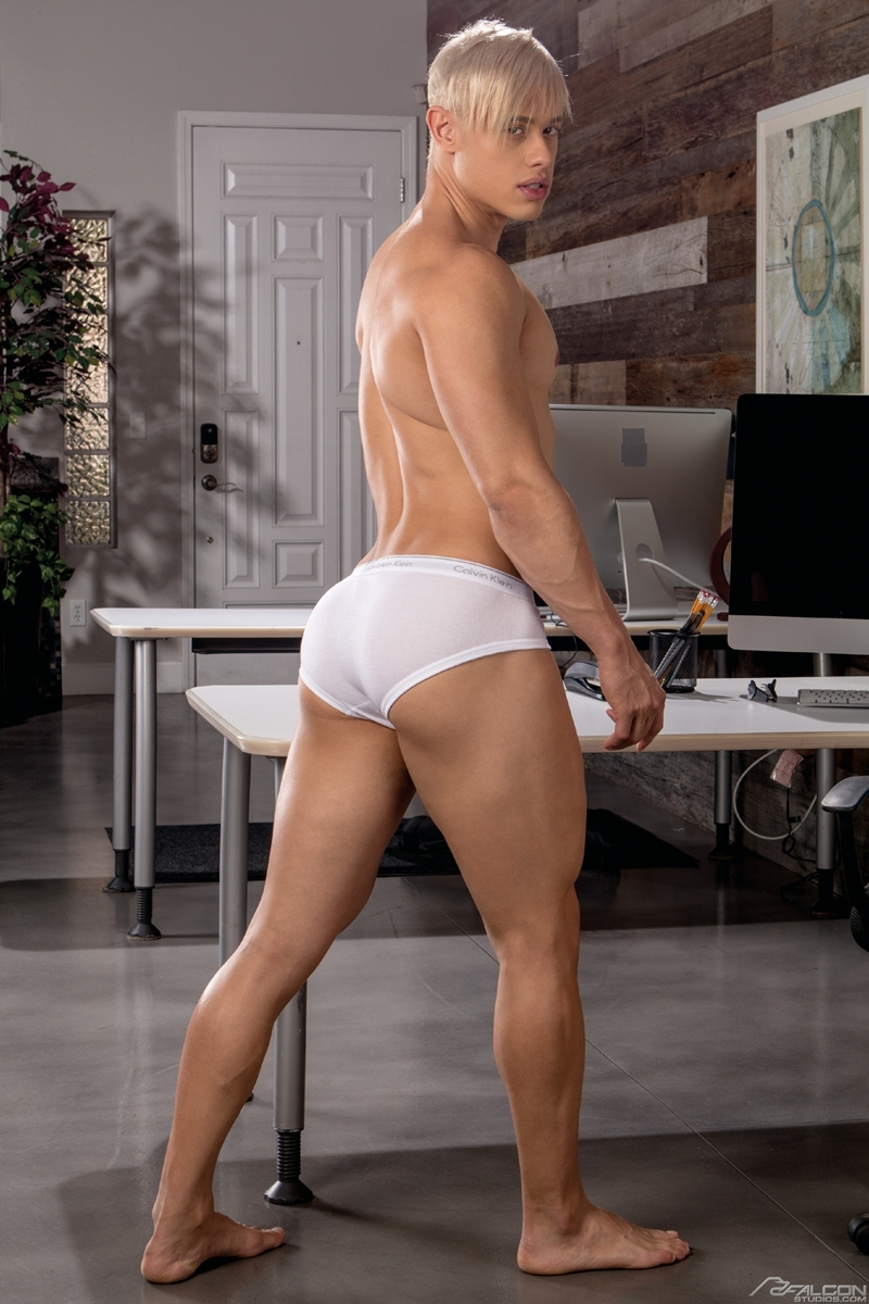 mateo-fernandez-alam-wernik-butt-hole-thick-cock-fucking-falconstudios-002-gay-porn-pictures-gallery