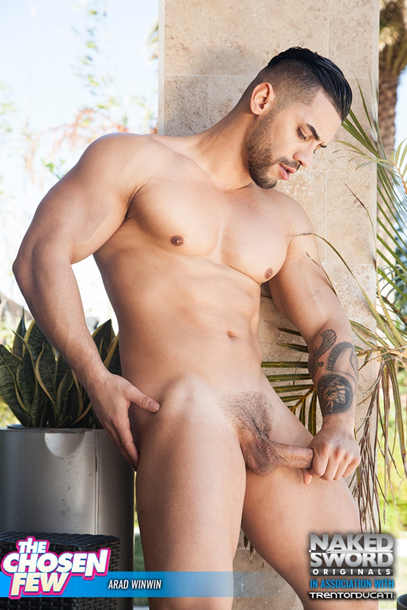 nakedsword-huge-cock-sucking-naked-muscle-dude-arad-winwin-alam-wernik-ass-hole-rimming-anal-fucking-007-gallery-video-photo