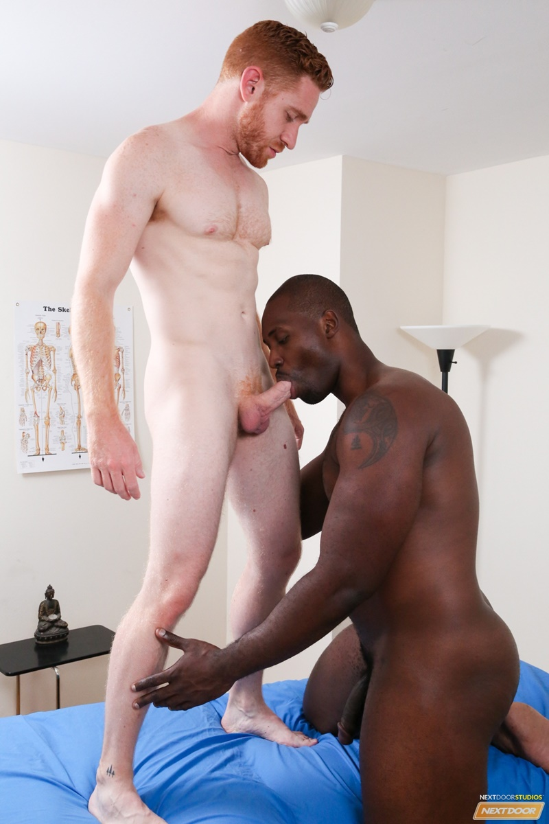 image Gay white sucks black dick hot porno