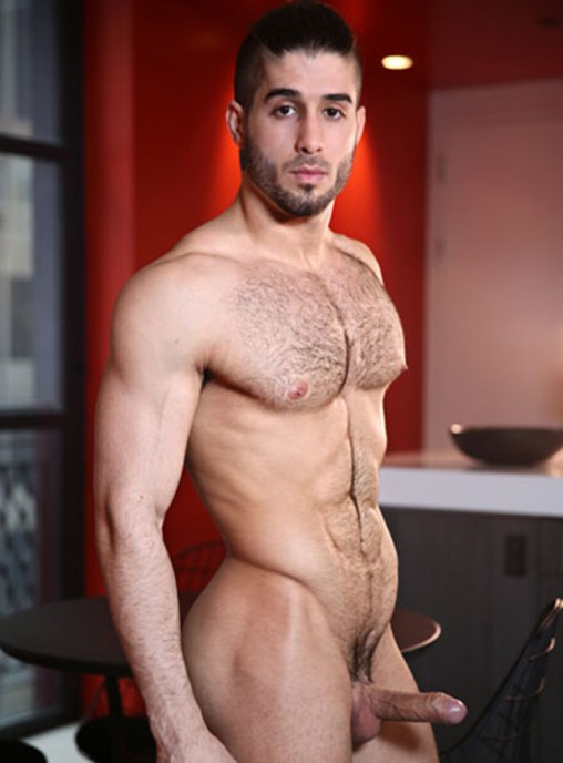 My Gay Porn Star List  The Worlds Best Gay Porn Stars-8657
